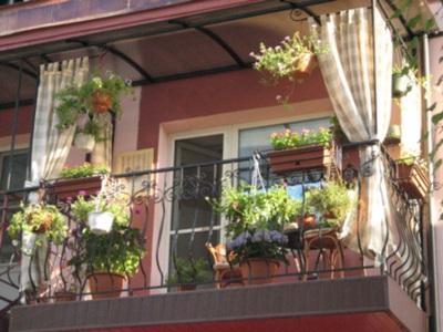 Как украсить балкон цветами: идеи и полезные советы