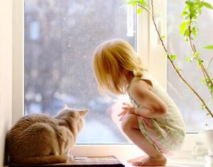 Виды защиты на пластиковые окна для безопасности детей 97